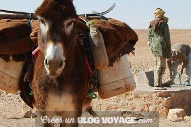 Voyage à Djerba : les 5 meilleurs endroits à voir et à visiter