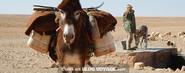 Voyage Djerba : les 5 meilleurs endroits à voir et à visiter