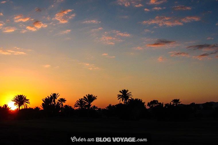 La Palmeraie de Marrakech compte plus de 100 000 arbres, principalement des palmiers